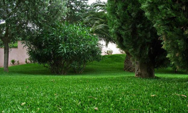 Comment choisir les pelouses artificielles ?