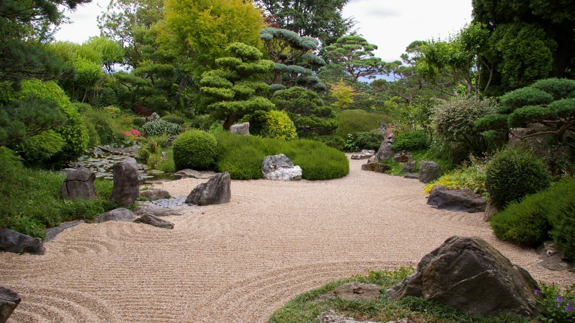 Guide pratique pour s'occuper de son jardin