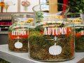 Jardinage débutant : où acheter des plantes de qualité ?